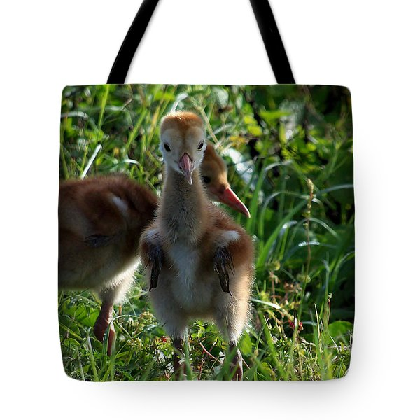 Sandhill Crane Chick 086  Tote Bag by Chris Mercer