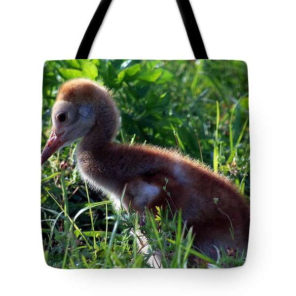 Sandhill Crane Chick 087  Tote Bag by Chris Mercer