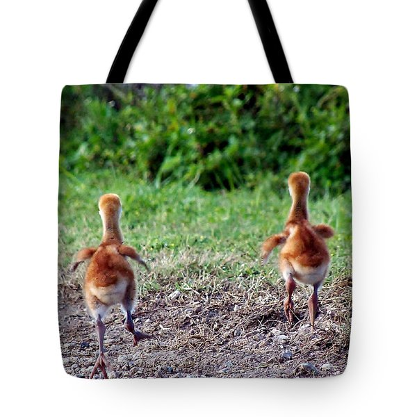 Sandhill Crane Chicks 000 Tote Bag by Chris Mercer