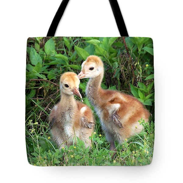 Sandhill Crane Chicks 001 Tote Bag by Chris Mercer
