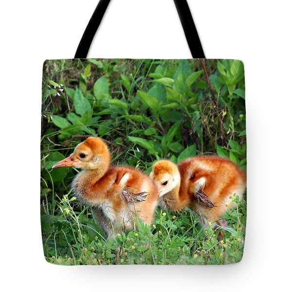 Sandhill Crane Chicks 002 Tote Bag