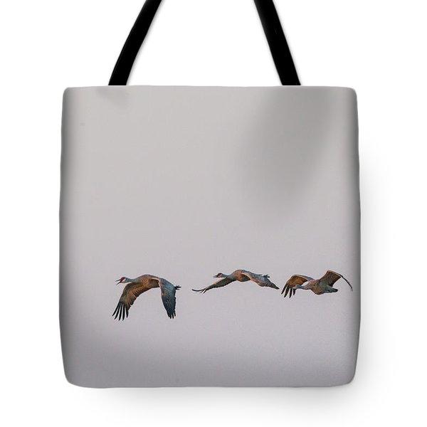Sandhill Crane Flying 2 Tote Bag
