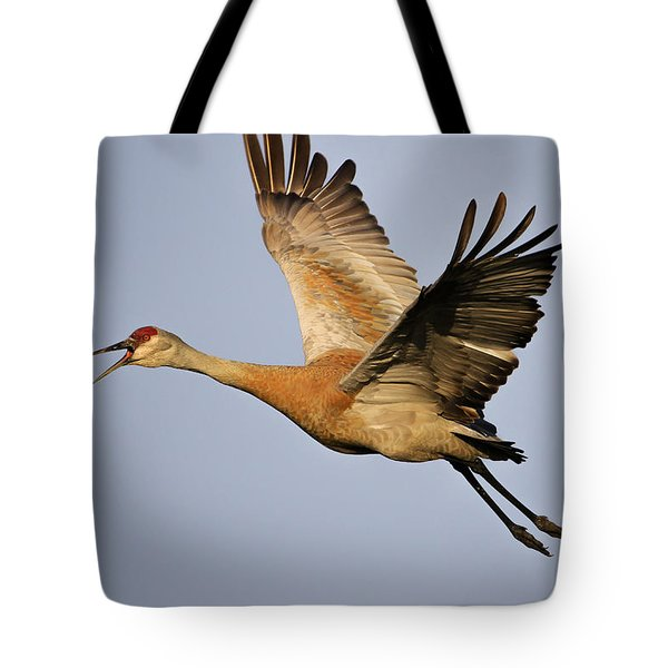 Sandhill Crane In Flight Tote Bag by Gary Hall