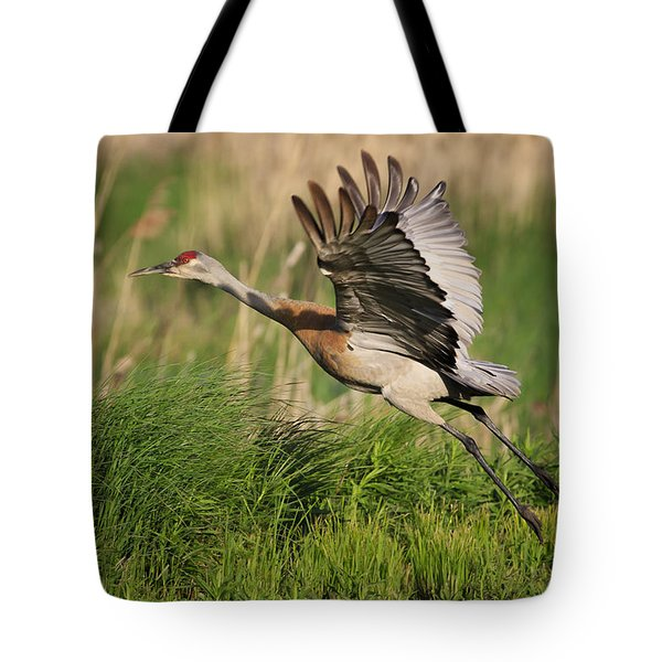 Sandhill Crane Lift Off Tote Bag by Gary Hall