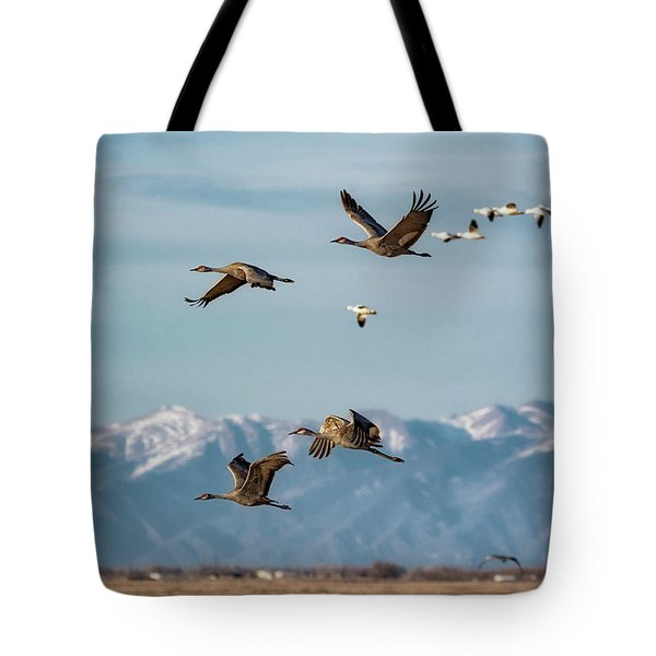 Tote Bag featuring the photograph Sandhill Crane Migration by Bitter Buffalo Photography