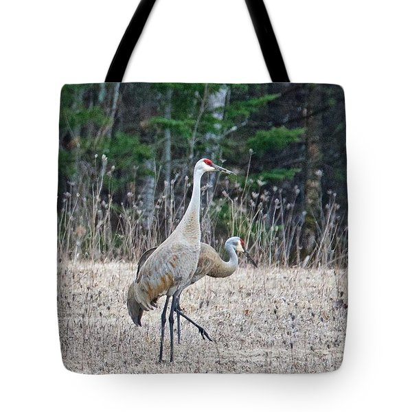 Tote Bag featuring the photograph Sandhill Cranes 1166 by Michael Peychich