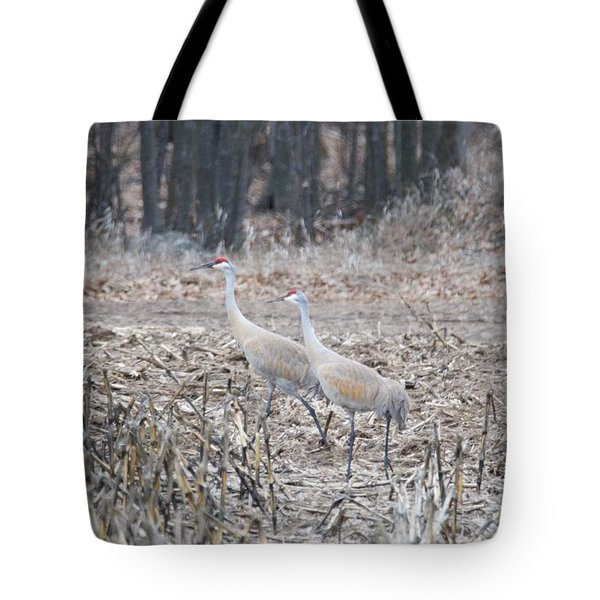 Tote Bag featuring the photograph Sandhill Cranes 1171 by Michael Peychich