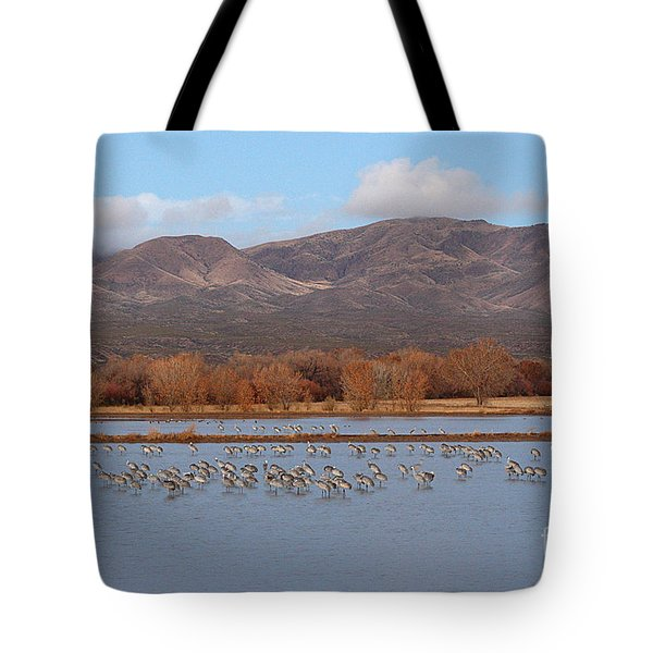 Tote Bag featuring the photograph Sandhill Cranes Beneath The Mountains Of New Mexico by Max Allen