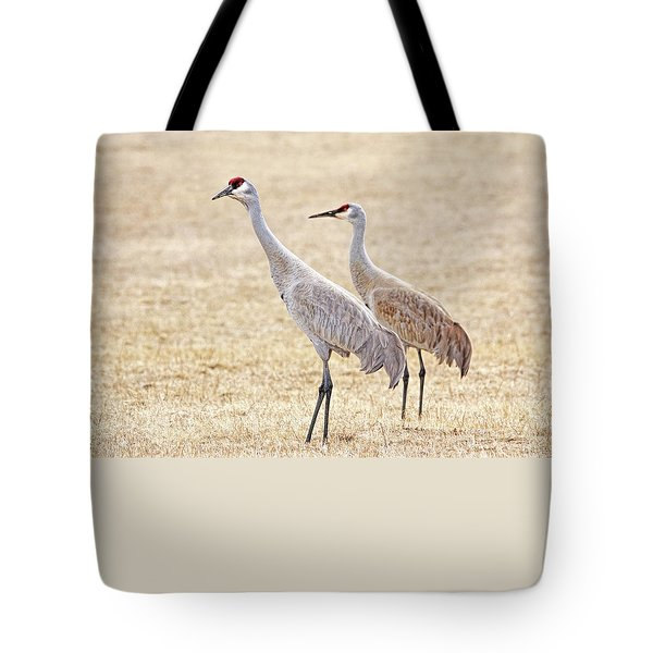 Tote Bag featuring the photograph Sandhill Cranes Of Montana by Jennie Marie Schell
