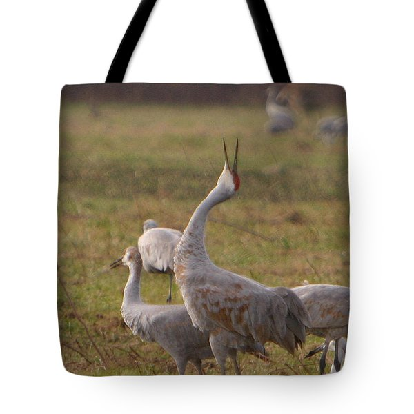 Tote Bag featuring the photograph Sandhill Delight by Shari Jardina