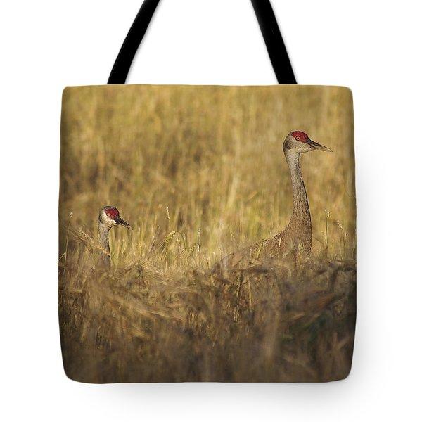 Sandhill Double Tote Bag