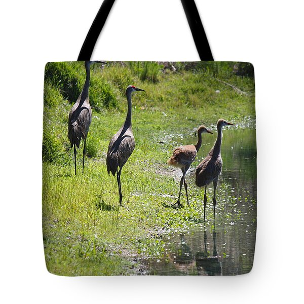 Sandhill Family By The Pond Tote Bag by Carol Groenen