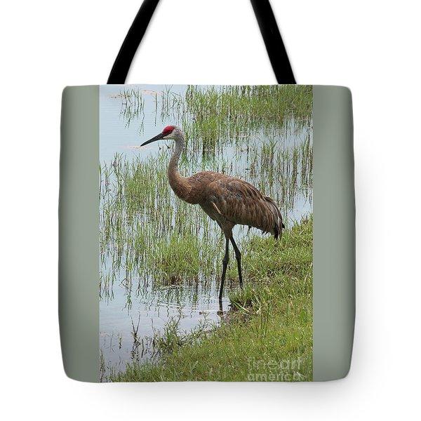 Sandhill In The Marsh Tote Bag