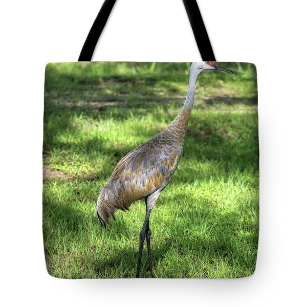 Sandhill In The Shadows Tote Bag