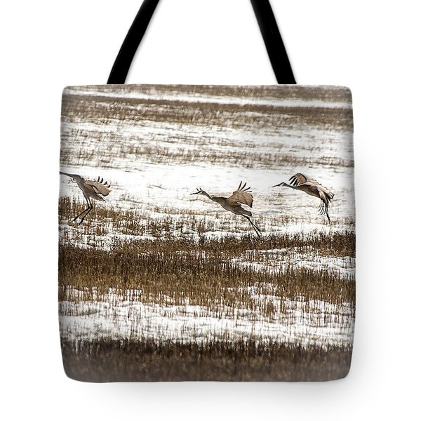 Sandhill Touch Down Tote Bag by Daniel Hebard