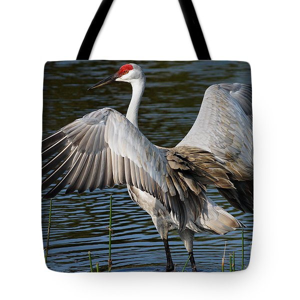 Sandhill Crane Wingstretch Tote Bag by Larry Nieland