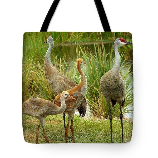 Sandhill Cranes On Alert Tote Bag