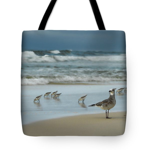 Sandpiper Beach Tote Bag by Renee Hardison