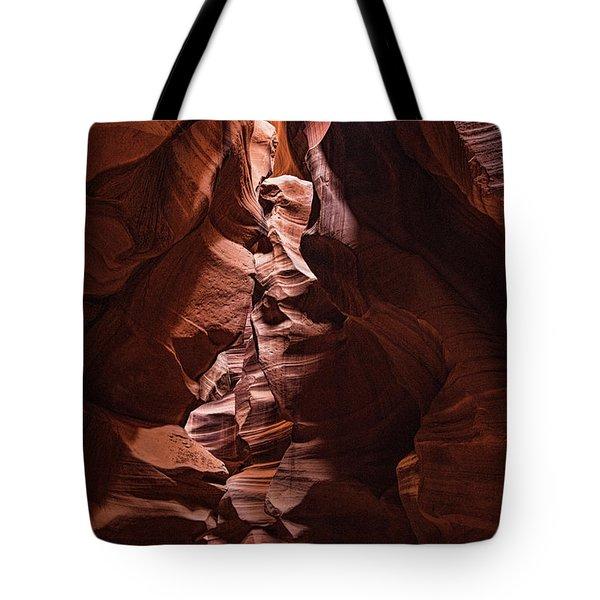 Sandstone Curves Tote Bag