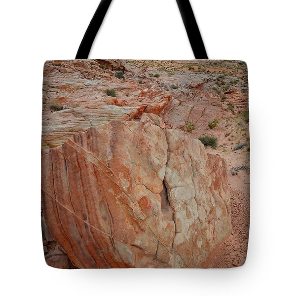 Sandstone Shield In Valley Of Fire Tote Bag