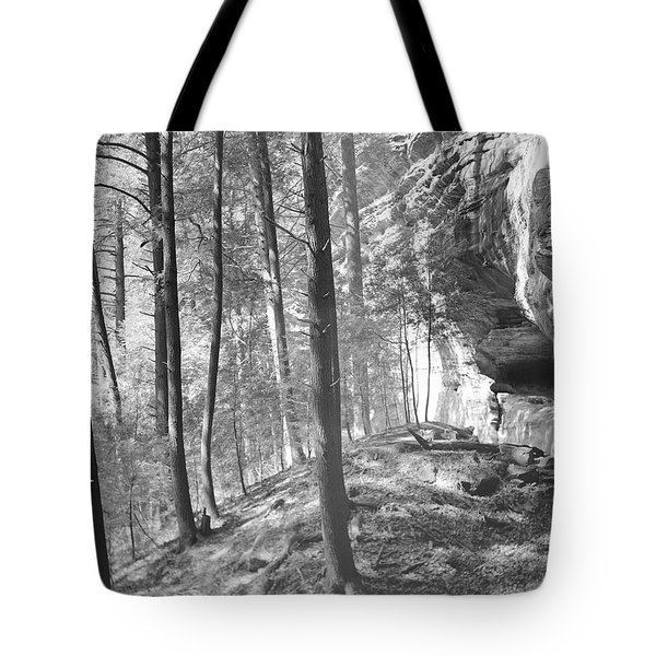 Sandstone Steps In The Woods Tote Bag