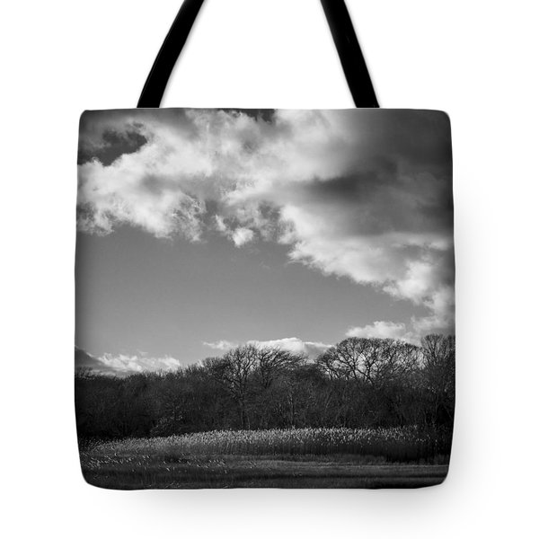 Sandwich Marsh Tote Bag