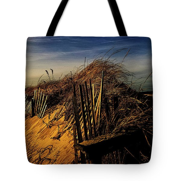 Sandy Neck Winter Light Tote Bag