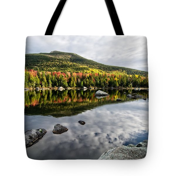 Reflection Sandy Stream Pond Me. Tote Bag