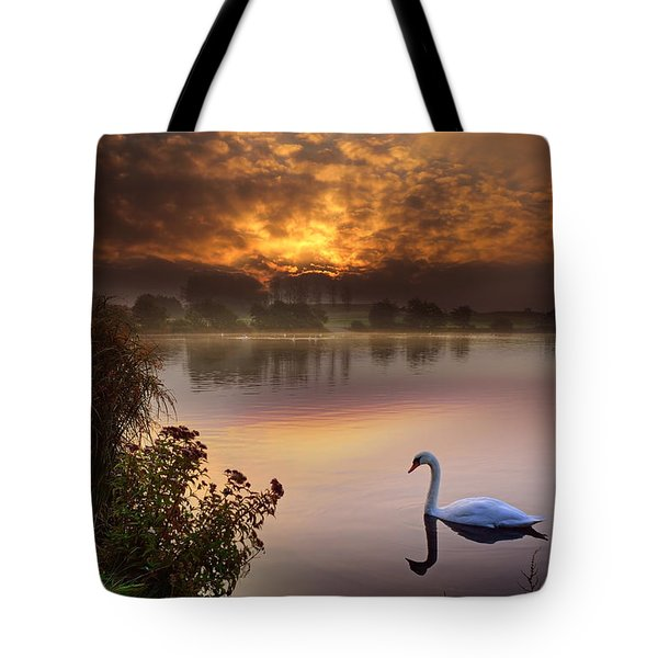 Sandy Water Park 2 Tote Bag