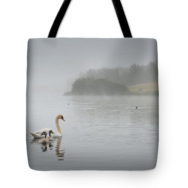 Sandy Water Park 3 Tote Bag