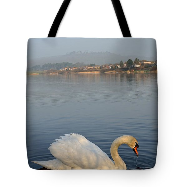 Sandy Water Park 4 Tote Bag