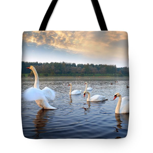 Sandy Water Park 5 Tote Bag