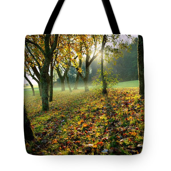 Sandy Water Park 7 Tote Bag