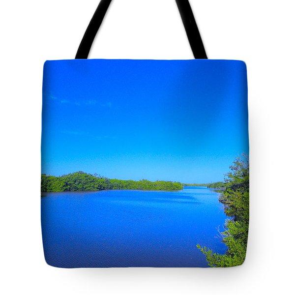 Sanibel Island, Florida Tote Bag