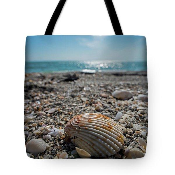 Sanibel Island Sea Shell Fort Myers Florida Tote Bag