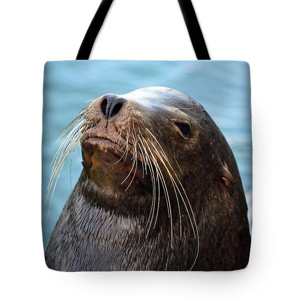Santa Cruz Dude - Sea Lion Tote Bag