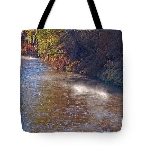 Santa Cruz River - Arizona Tote Bag by Donna Greene