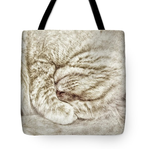 Santa Dreams Tote Bag