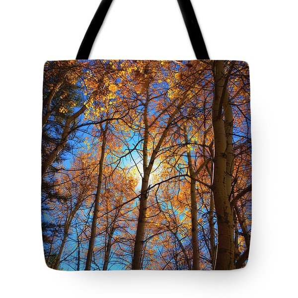 Tote Bag featuring the photograph Santa Fe Beauty II by Stephen Anderson