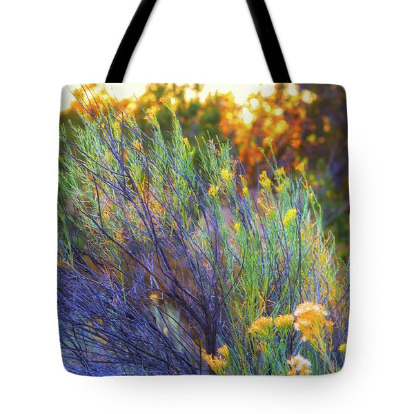 Tote Bag featuring the photograph Santa Fe Beauty by Stephen Anderson