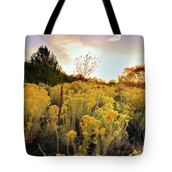 Tote Bag featuring the photograph Santa Fe Magic by Stephen Anderson