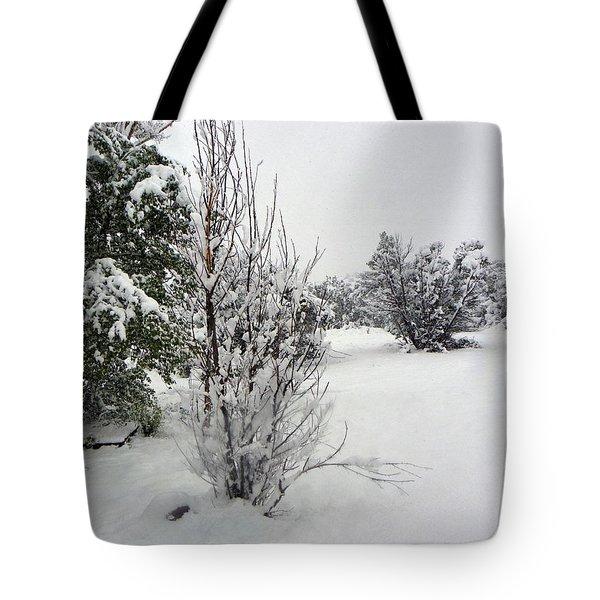 Santa Fe Snowstorm 2017 Tote Bag