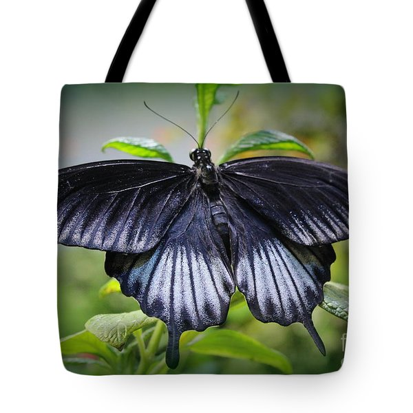 Sapphire Blue Swallowtail Butterfly Tote Bag
