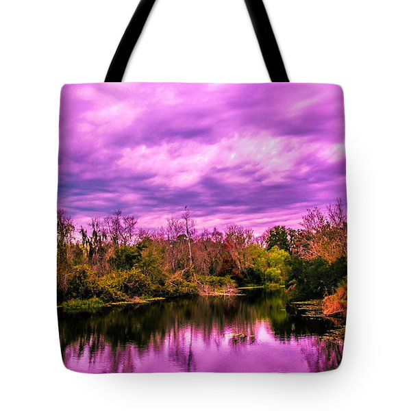 Tote Bag featuring the photograph Sarasota Symphony 2 by Madeline Ellis