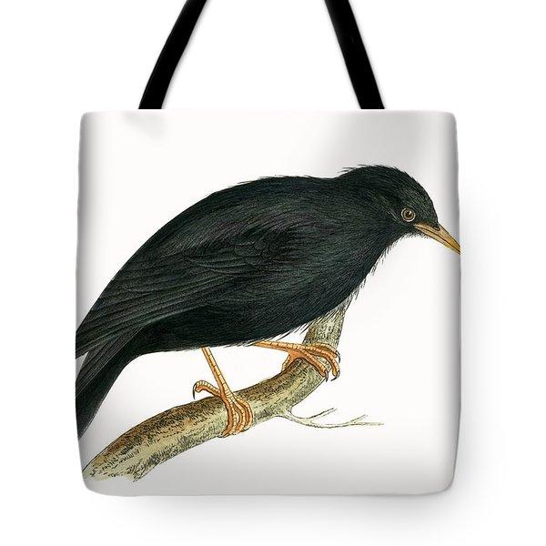 Sardinian Starling Tote Bag