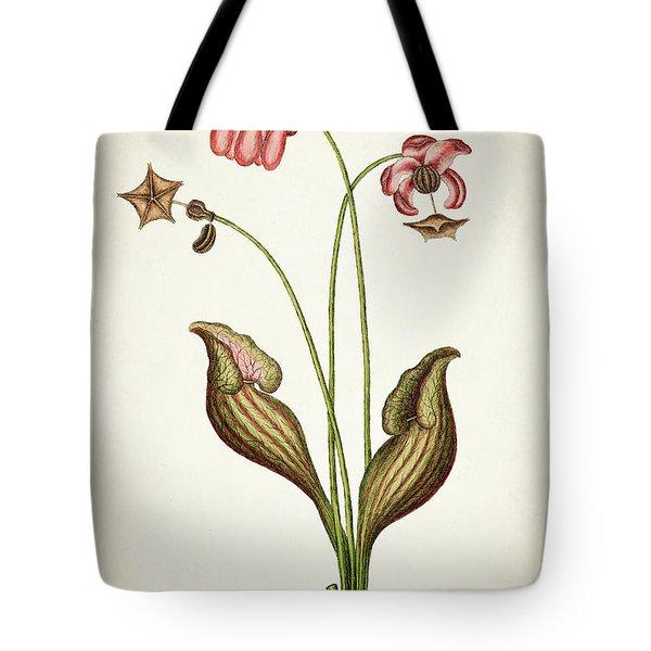 Sarracena Canadensis Botanical Print Tote Bag