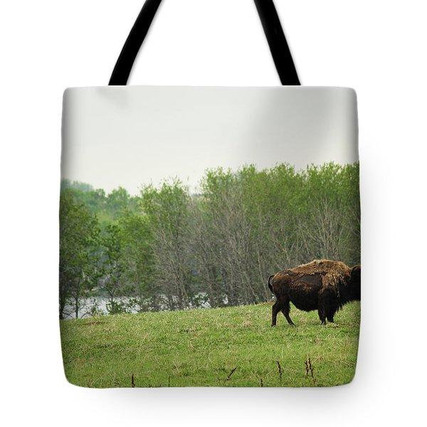 Saskatchewan Buffalo Tote Bag