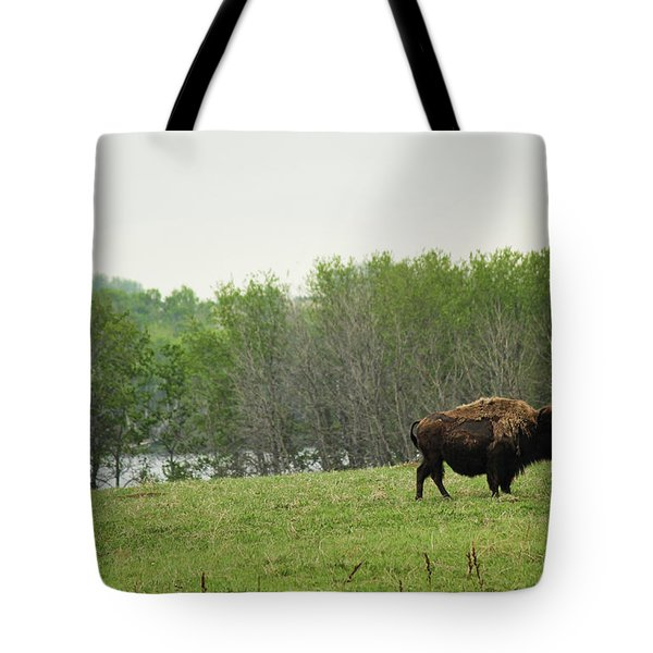 Saskatchewan Buffalo Tote Bag by Ryan Crouse