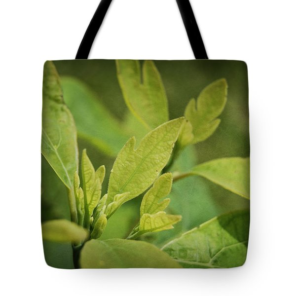 Sassafras Tree Tote Bag