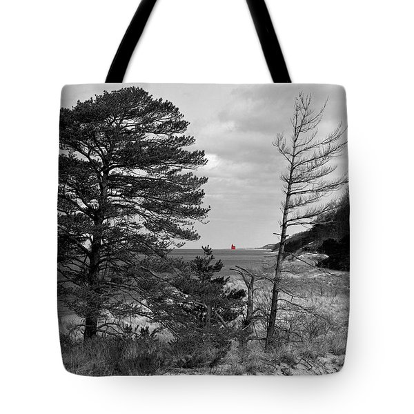 Saugatuck State Park In November Tote Bag